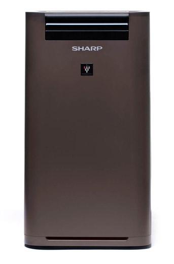 Oczyszczacz Sharp UA-HG40E-T